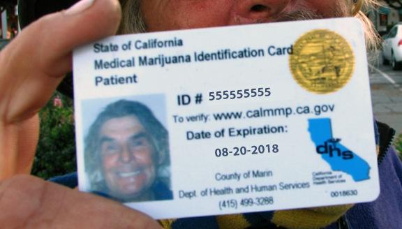 Home - Service Marijuana California Delivery